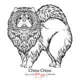 Chow Chow Zwart-witte grafische tekening van een hond Stock Afbeeldingen