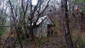 Chowana buda w lesie Fotografia Royalty Free