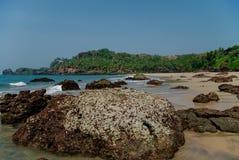Chowana piasek plaża z palmami blisko Agonda plaży, Goa stan, India zdjęcia stock