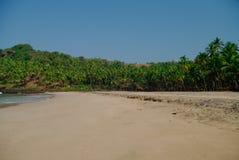 Chowana piasek plaża z palmami blisko Agonda plaży, Goa stan, Indi Obraz Royalty Free