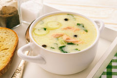 Chowder fish soup with rainbow trout. Chowder fish soup with rainbow trout Royalty Free Stock Images