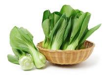 Choy Bok Stock Afbeelding