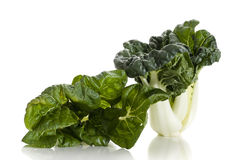 Choy Stock Photo