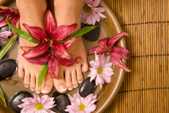 choyer de footcare Photo stock