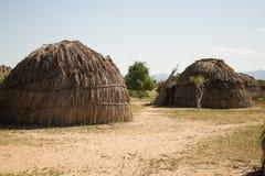 Choza Arbore Imagen de archivo libre de regalías