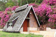 Choza con el fondo de la buganvilla Foto de archivo libre de regalías