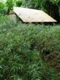 Choza cubierta con paja de la paja, bosque Foto de archivo libre de regalías