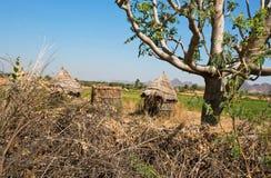 Choza de la paja en un pueblo pobre en medio de la naturaleza Fotografía de archivo