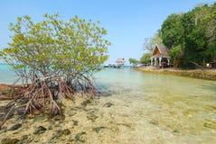 Choza del mangle y del mar al lado de la orilla de mar imagen de archivo