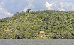 Choza del retratamiento de la selva Imagen de archivo libre de regalías