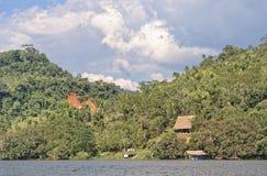Choza del retratamiento de la selva Fotografía de archivo