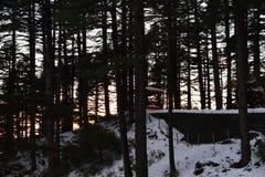 Choza en bosque y nieve Fotos de archivo libres de regalías