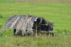 Choza en campo de arroz imagen de archivo libre de regalías