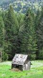 Choza en el bosque Fotos de archivo