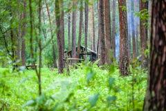 Choza en el bosque verde Fotos de archivo libres de regalías