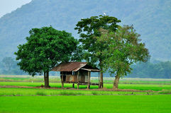 Choza en granja Imagenes de archivo