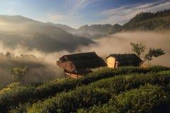Choza en la montaña Fotos de archivo libres de regalías
