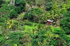 Choza en la selva verde en la montaña, Asia Foto de archivo libre de regalías
