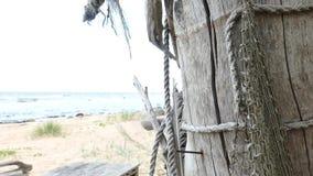 Choza improvisada del refugio de la playa de la madera de deriva metrajes