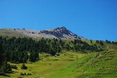 Choza sola, bosque y montan@as suizas hermosas Fotografía de archivo
