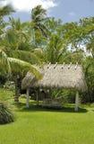 Choza y palmeras Imagenes de archivo