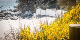 Chozas blancas viejas de la playa Foto de archivo libre de regalías