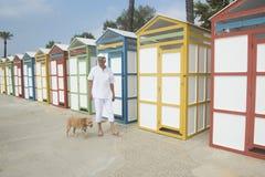 Chozas coloridas de la playa y hombre mayor con el perro Imágenes de archivo libres de regalías