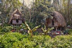 Chozas de la selva Imagenes de archivo