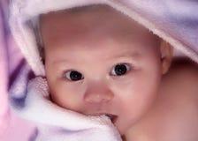 Chéri Photo stock