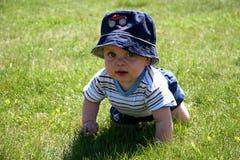 Chéri dans l'herbe Image libre de droits