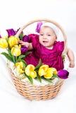Chéri nouveau-née dans le panier Images libres de droits