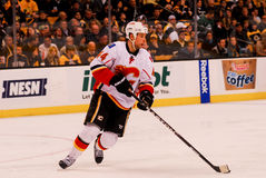 Chris Butler Calgary Flames #44. Royalty Free Stock Images