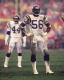 Chris Doleman Minnesota Vikings livre image stock