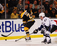 Chris Kelly, Boston Bruins Royalty-vrije Stock Afbeelding
