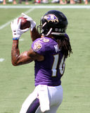 Chris Moore. Baltimore Ravens WR Chris Moore #10 Royalty Free Stock Photography
