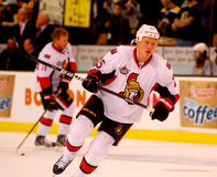 Chris Neil Ottawa Senators Stock Images