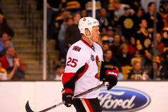 Chris Neil Ottawa Senators Royalty Free Stock Image