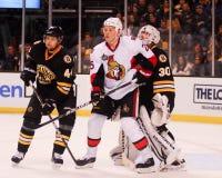 Chris Neil Ottawa Senators Royalty Free Stock Image