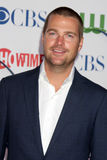 Chris O'Donnell lizenzfreie stockbilder