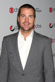 Chris O'Donnell Stock Images