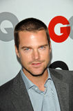 Chris O'Donnell Royalty Free Stock Image