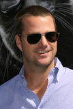 Chris O'Donnell Royalty Free Stock Photography