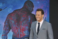 Chris Pratt. LOS ANGELES, CA - JULY 21, 2014: Chris Pratt at the world premiere of his movie Guardians of the Galaxy at the El Capitan Theatre, Hollywood royalty free stock images