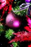紫色装饰品 免版税图库摄影