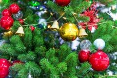 Chrismas-Baum und roter Ball Stockfotografie