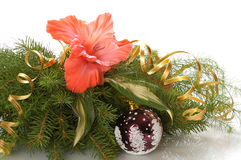 Chrismas composition Royalty Free Stock Images