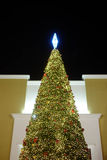 Chrismas drzewo Plama wizerunek Fotografia Stock