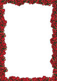 Chrismas floral frame Stock Photography