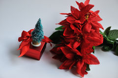 Chrismas flowers and gifts Royalty Free Stock Image