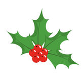 Chrismas holly berry icon Stock Image
